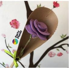 Večna vrtnica temno vijolična